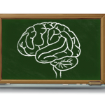 Towards a Mindful Classroom: Understanding The Adolescent Brain, Part 2